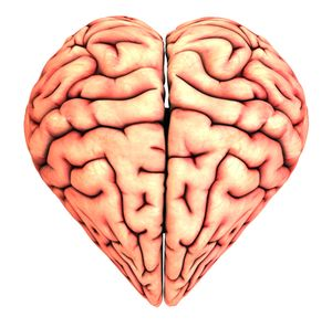 love_neuroscience