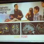 Prof. Gemma Calvert - fMRI